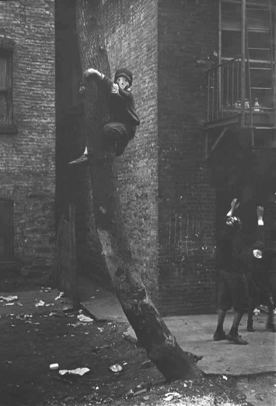 Helen Levitt, 'Untitled (Masks in Tree), New York City, New York (variant)', ca. 1939, Photography, Gelatin silver print, Robert Klein Gallery
