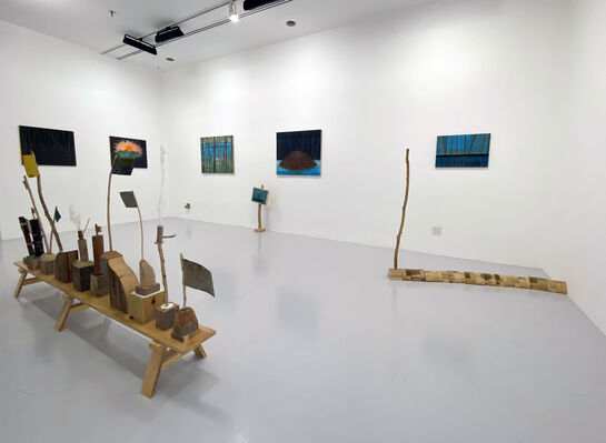 Tom Reed: this is the before, installation view