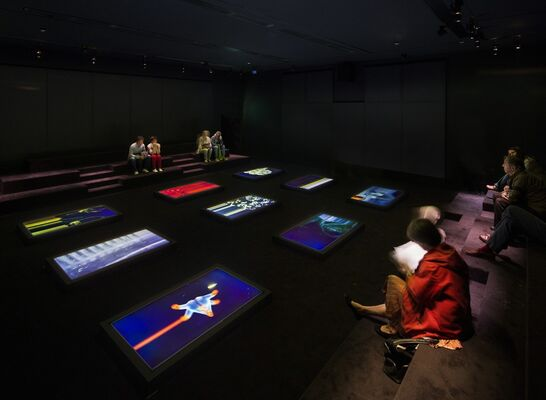 The Great Animal Orchestra, installation view