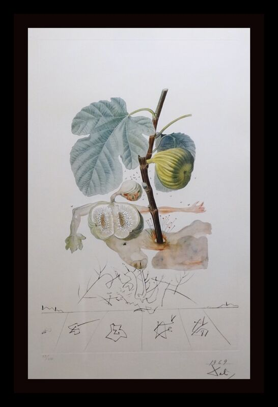 Salvador Dalí, 'FlorDali/Les Fruits Fig', 1969, Print, Etching, Fine Art Acquisitions Dali