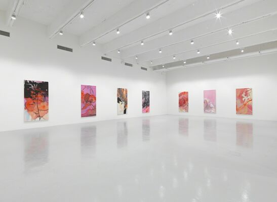 Rita Ackermann: KLINE RAPE, installation view
