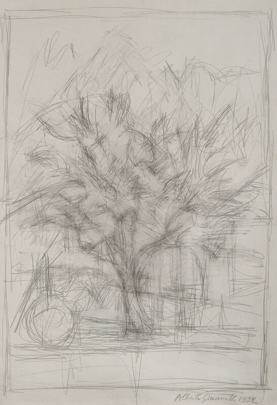 Alberto Giacometti, 'Arbre', 1952, Drawing, Collage or other Work on Paper, Pencil on paper, BAILLY GALLERY