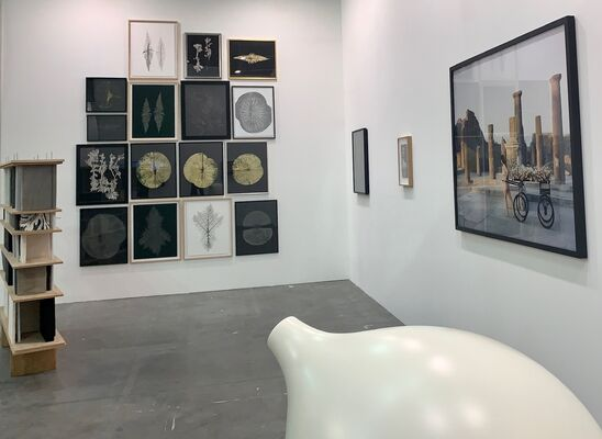 Alberta Pane at Artissima 2019, installation view