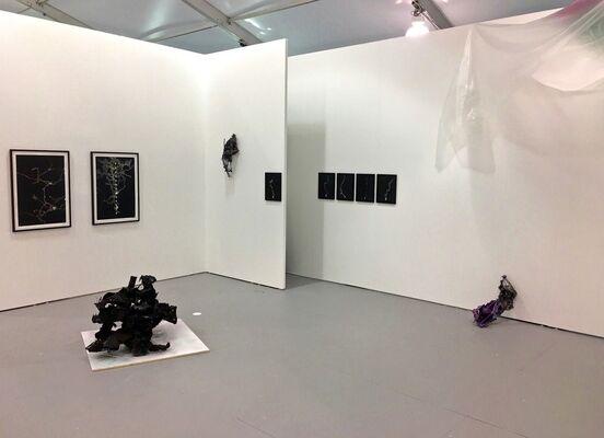 Galerie Lisa Kandlhofer at UNTITLED, Miami Beach 2016, installation view