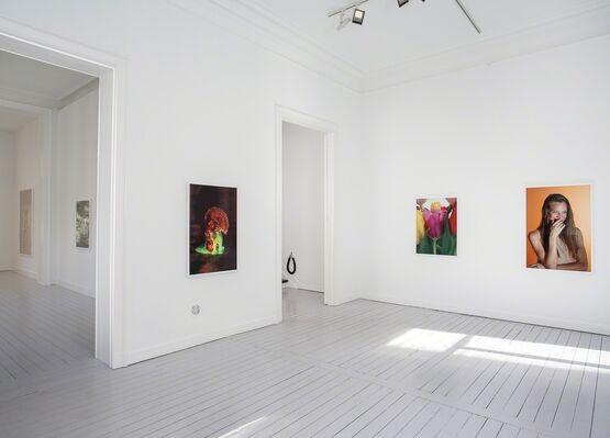 Roe Ethridge, installation view