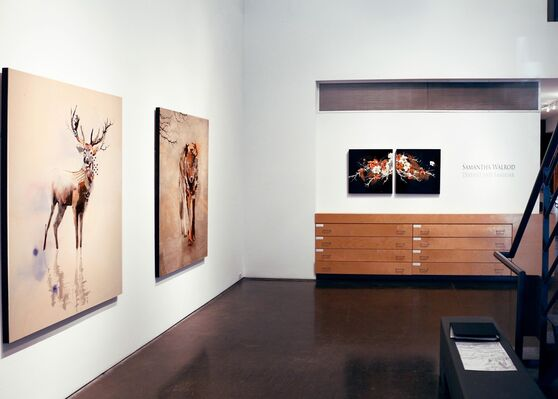 "Samantha Walrod - ""Distant and Familiar"", installation view"