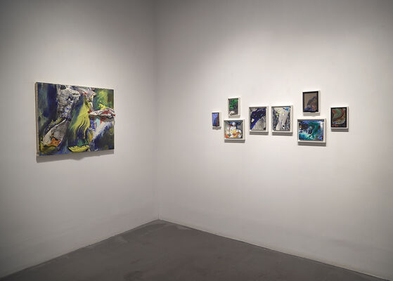 James Walsh: THE ELEMENTAL, installation view