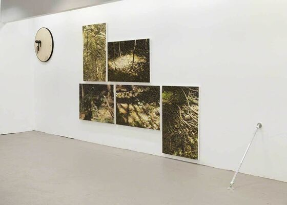 High Density, Oblique Function, installation view