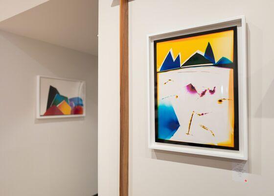 Liz Nielsen // Paul Smith Collaboration, installation view