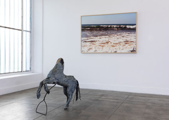 Doesn't whine by blue moon, installation view