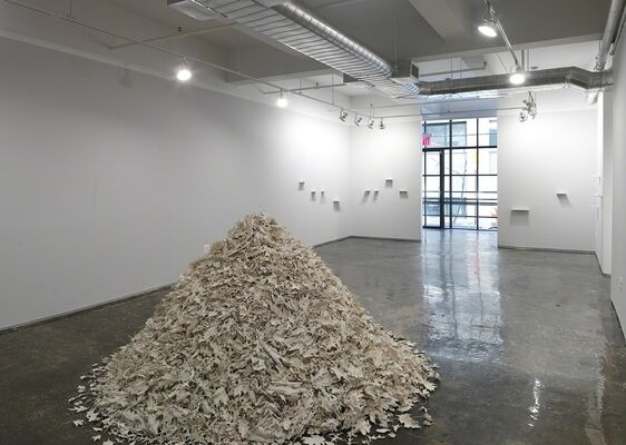 In The Nature Of, installation view