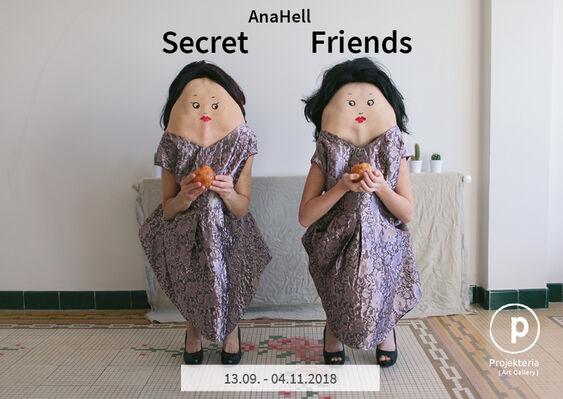Secret Friends  - AnaHell, installation view