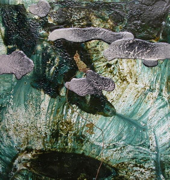 Michael Porter, 'Coastal path 05-02-11', 2011