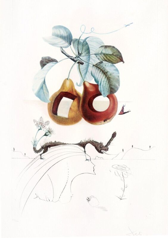 Salvador Dalí, 'Les Fruits  troues', 1960, Drawing, Collage or other Work on Paper, Color lithograph and drypoint on Arches Paper, Cha Cha Gallery