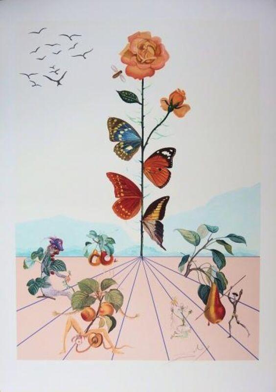 Salvador Dalí, 'Flordali II - La Rose Papillon', 1981, Print, Original lithograph on wove paper, Samhart Gallery