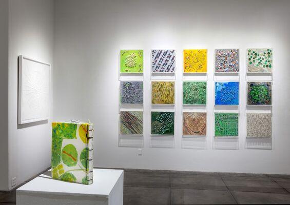 Richelle Gribble     Anthropocene, installation view