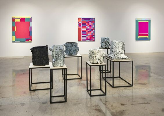Double Vision, installation view