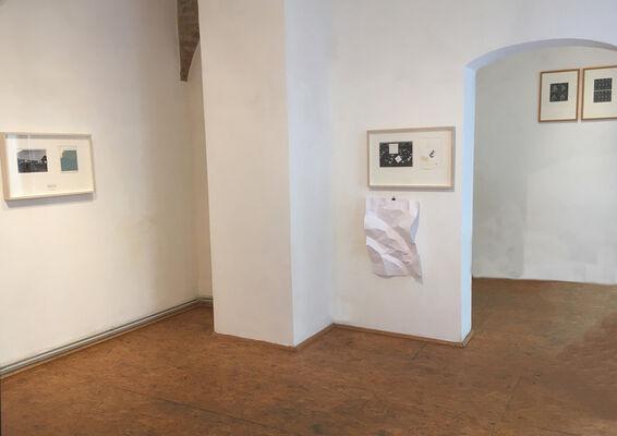 Tadej Pogačar   CODE:RED, installation view