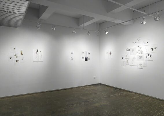 In & Out, installation view