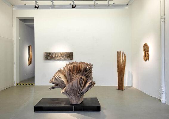 Herbert Golser - Formenwandel, installation view
