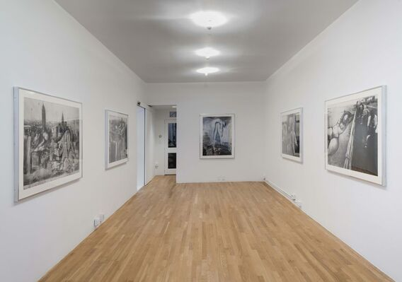 Anita Steckel, Anita of New York, installation view