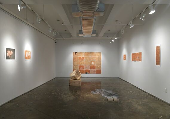 The Blossom as the Self, installation view
