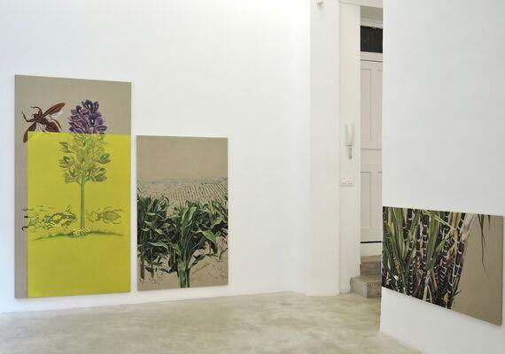 Primavera silenciosa, installation view