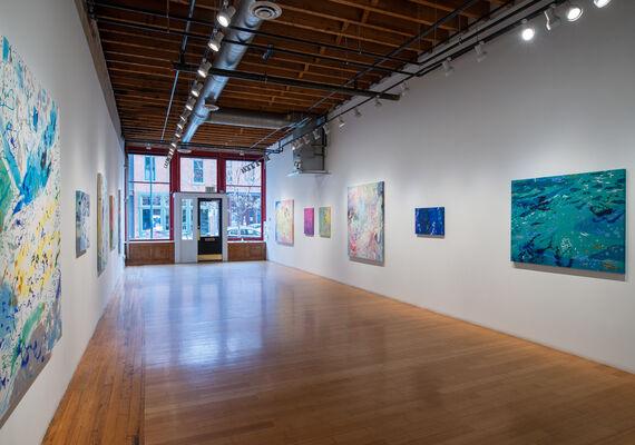 Brian Rattiner, Hummingbird, installation view