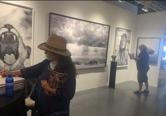 The Directed Art Modern at Jackson Hole Fine Art Fair 2019, installation view