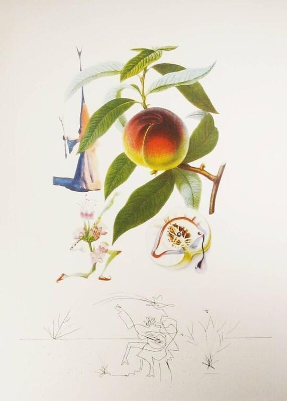Salvador Dalí, 'Flordali - Pêcher Pénitent', 1969, Print, Original etching on Rives paper, Samhart Gallery