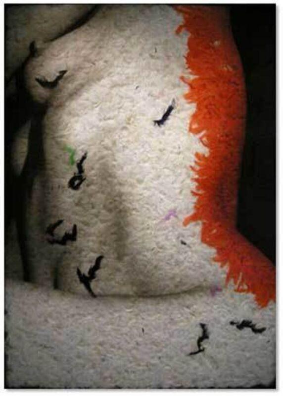 Daniel Gastaud, 'BODY 99', 2008, Mixed Media, Photo, Plumes under Plexiglas, Eden Fine Art