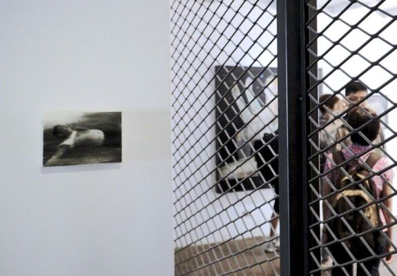 My Beloved Wouldn't Save Me!, installation view