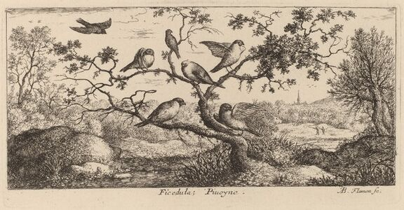 Albert Flamen, 'Ficedula, The Bullfinch'