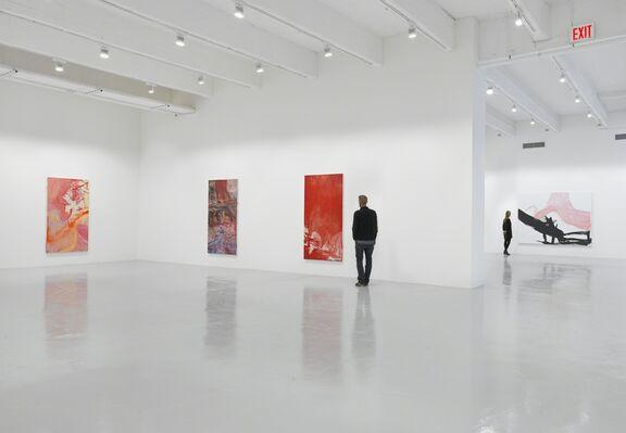 Rita Ackermann: KLINE RAPE, installation view
