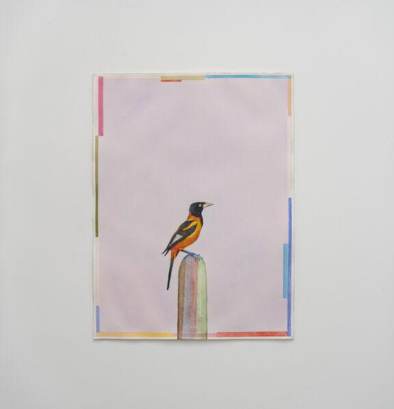 Efrain Almeida, 'Corrupião (Mandacaru)', 2019