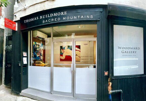 Thomas Buildmore Sacred Mountains, installation view