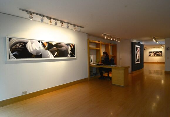Edges of Reality. Photographs by Janice Mehlman, installation view