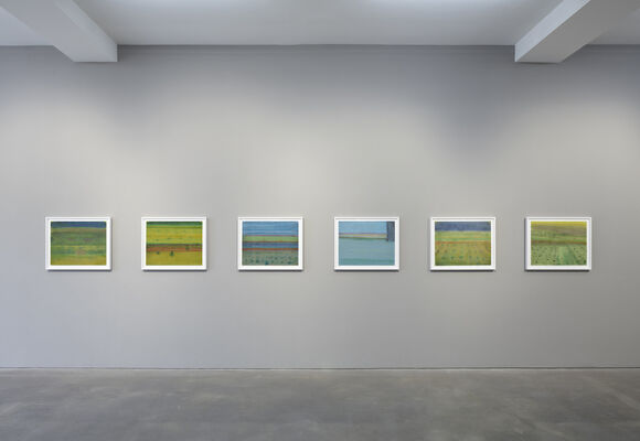 New Mexico, installation view