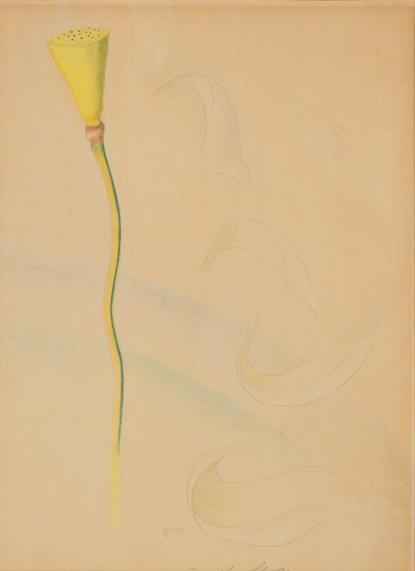 Joseph Stella, 'Flower', Drawing, Collage or other Work on Paper, Colored pencil on paper, Doyle