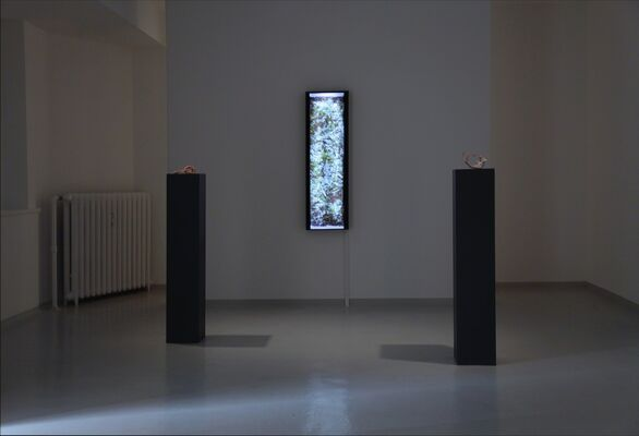 Georg Jagunov | Khlōra, installation view