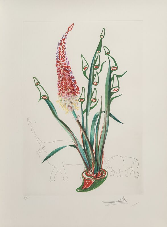 Salvador Dalí, 'Stock Rhinos, from Florals', 1972, Print, Lithograph in colors on heavy Arches paper, Heritage Auctions