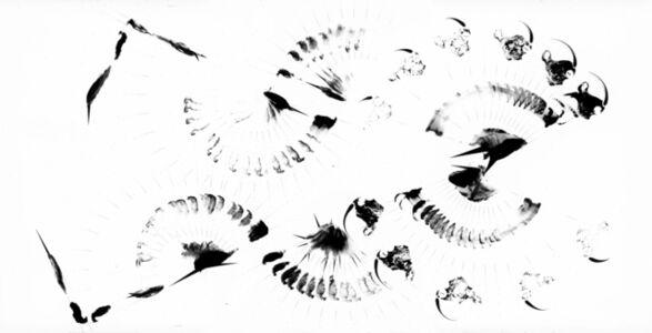 Ralf Ziervogel, 'Disorder Prelude III', 2016