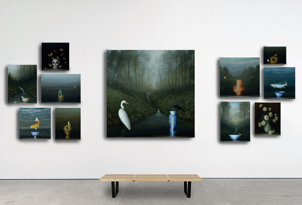 David Kroll: Fragile Nature, installation view