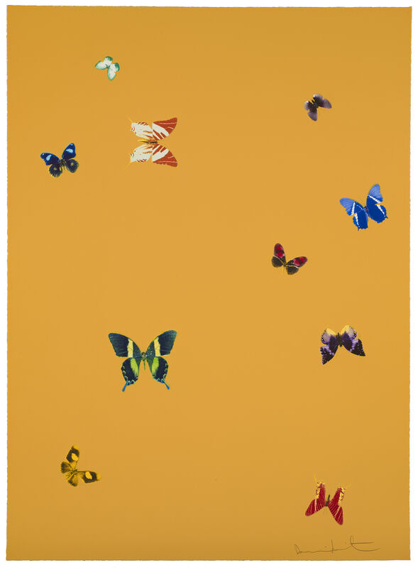 Damien Hirst, 'Your Beauty', 2015, Print, Polymer-gravure etching with lithographic overlay, Zeit Contemporary Art