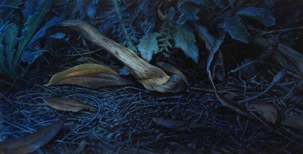 Aleah Chapin, 'Portrait of my Garden No.2', 2019