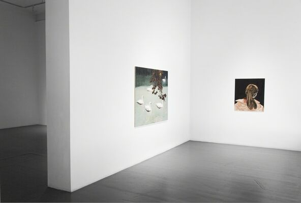 Mamma Andersson and Tal R: Svanesang, installation view