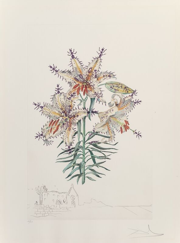 Salvador Dalí, 'Lily Chapelle, from Florals', 1972, Print, Lithograph in colors on heavy Arches paper, Heritage Auctions