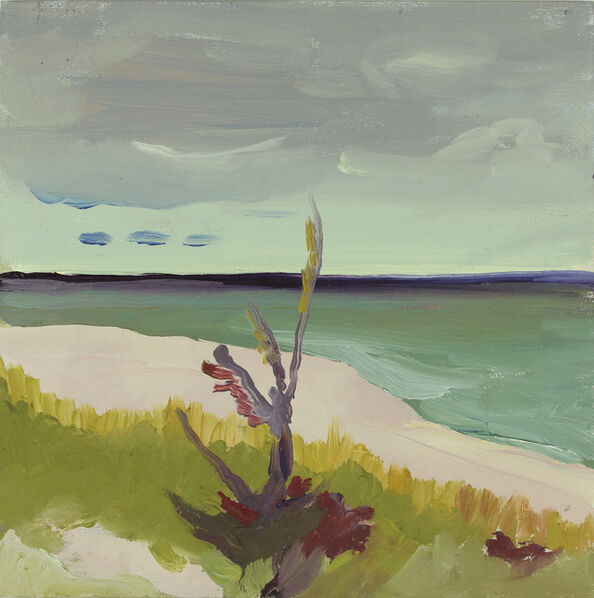 Melissa Brown, 'Fire Island', 2013
