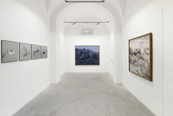 FABIO BARILE   An investigation of the laws observable in the composition, dissolution and restoration of land, installation view