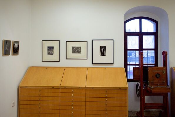 Women of Vision, installation view